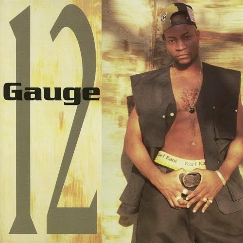 12 Gauge - 12 Gauge cover