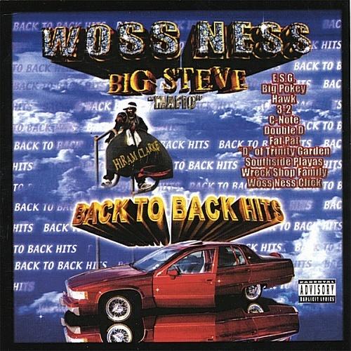 Big Steve - Back To Back Hits cover