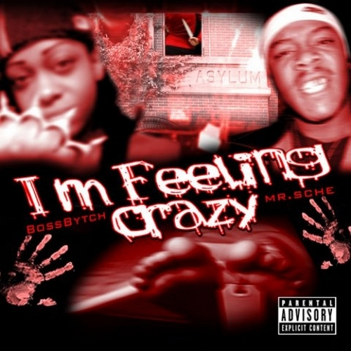 Boss Bytch & Mr. Sche - Im Feeling Crazy cover