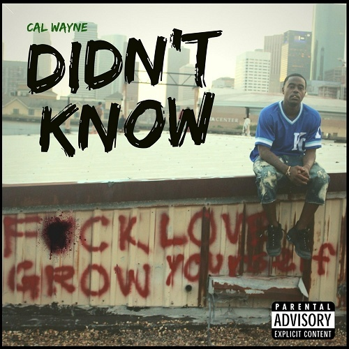 Cal Wayne - Didn`t Know cover