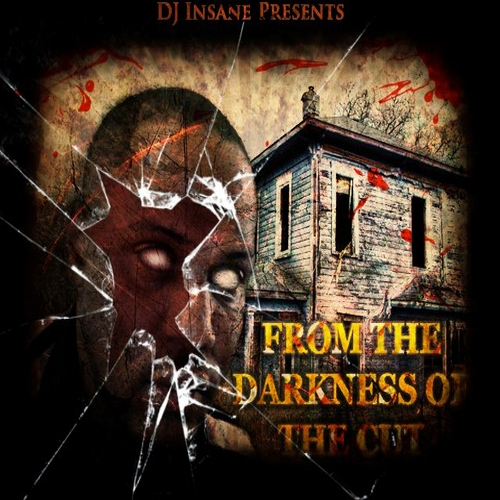 DJ Insane - From The Darkness Of The Cut cover