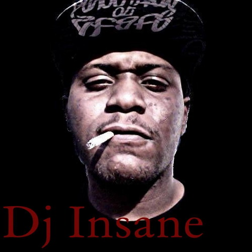 DJ Insane - The 2004-2010 DJ Insane Collection cover