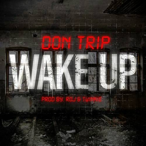 Don Trip - Wake Up cover