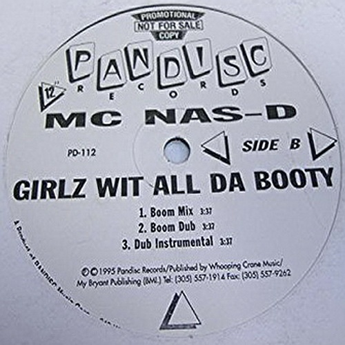 MC Nas-D - Girlz Wit All Da Booty (12'' Vinyl, Promo) cover
