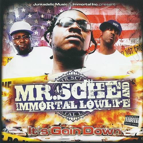 Mr. Sche & Immortal Lowlife - It`s Goin Down cover