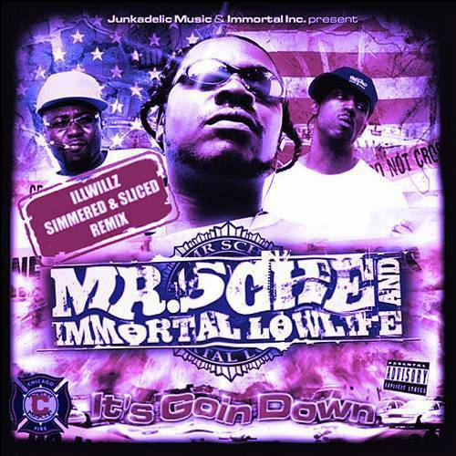 Mr. Sche & Immortal Lowlife - It`s Goin Down (slicced & simmered) cover