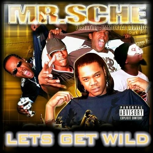 Mr. Sche - Lets Get Wild cover