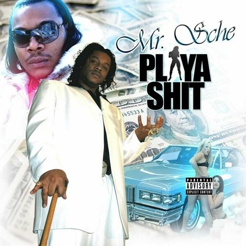 Mr. Sche - Playa Shit cover
