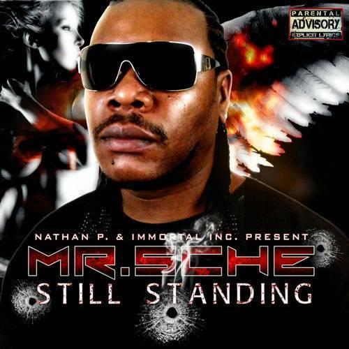 Mr. Sche - Still Standing cover