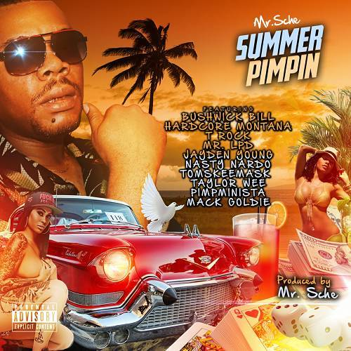 Mr. Sche - Summer Pimpin cover