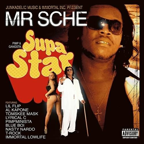 Mr. Sche - Supastar cover