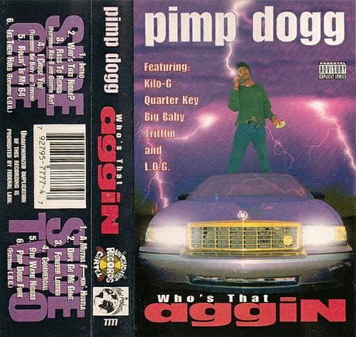 Pimp Dogg - Who`s That Nigga cover