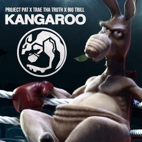 Project Pat - Kangaroo cover